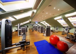 Palace Bridge gym 5